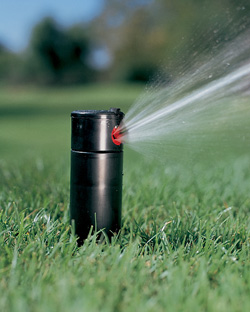 A Biased View of Sprinkler System Cost